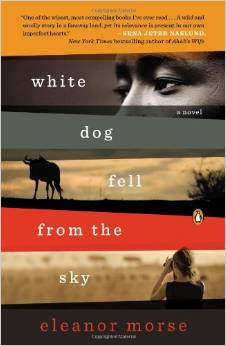 White Dog Fell From The Sky, by author Eleanor Morse